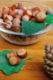 Some hazelnuts on leaf Stock Images