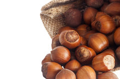 A some hazelnuts Stock Photos