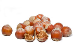 Some hazelnuts on white Stock Image