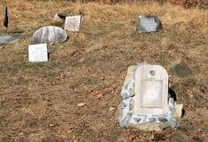 Dog cemetery. Some headstones on the cemetery for hunting dogs on Zdar Hill, Beskydy mountains, Czech Republic Stock Photography