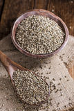 Some Hemp Seeds. (close-up shot) on wooden background royalty free stock photos