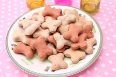 Cookies for Dogs. Some homemade cookies for Dogs with pork meat Stock Image