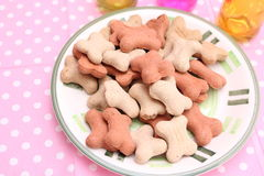 Cookies for Dogs. Some homemade cookies for Dogs with pork meat Royalty Free Stock Images