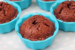 Cupcakes with chocolate. Some homemade cupcakes of wheat flour with chocolate Stock Photos