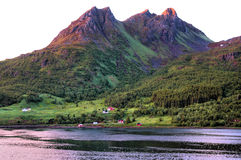 Some houses in the mountainous shore of a Norwegia. N fjord Royalty Free Stock Photography
