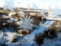 Some ice crystals on glass santa left us.  Stock Photos