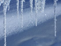 Some icicles. In front of snow Royalty Free Stock Images