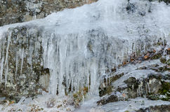 Some icicless hanging down from the cliff Stock Image