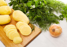 Some ingridients of food. Some ingridients of raw vegetables Stock Photos