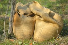 Jute bags with the olives. Some jute bags with olives Royalty Free Stock Photo