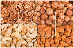 Some kinds of nuts fragments. A collage Royalty Free Stock Photos