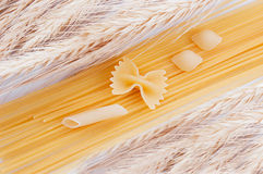 Some kinds of spaghetti and macaroni. Wheat and some kinds of spaghetti and macaroni royalty free stock photo