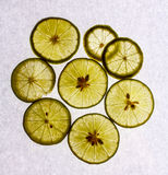 Some lime slices on white. Thin lemon slices on a plate, white background Royalty Free Stock Photography