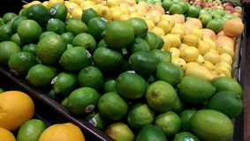 Some limes Stock Photography