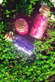 Some little glass bottles with dreams in the spring forest. Stock Photo