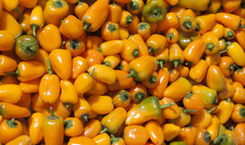 Some little peppers at street market. Image of some little peppers at street market Royalty Free Stock Photo