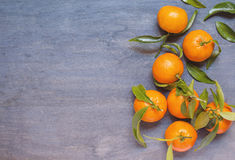 Some mandarine on wooden background. Some mandarine on dark wooden background Royalty Free Stock Image