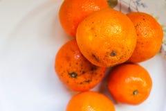 Some Mandarins. Closeup Detail Surface Royalty Free Stock Image