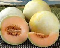 Some melons over a wooden surface Royalty Free Stock Photo