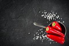 Some mini peppers and salt over black background. Copy space royalty free stock images