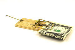 Money trapped in a mouse trap Royalty Free Stock Images