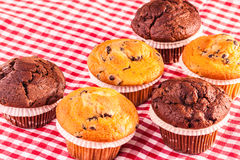 Some Muffins on table. Some delicious homemade muffins with chocolate drops on a red and white checkered tablecloth Stock Photo