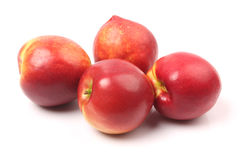 Some nectarine fruit Stock Image