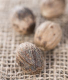 Some Nutmegs (close-up shot) Royalty Free Stock Photos