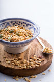 Some oats with pepitas. Small portion of organic homemade granola stock image