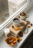 Autumn mood card. Black coffee on the window at rainy weather. B. Some old books, a cup of black coffee. Rainy day. Dried orange and cones royalty free stock photos