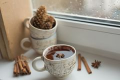 Autumn mood card. Black coffee on the window at rainy weather. B. Some old books, a cup of black coffee. Rainy day. Dried orange and cones royalty free stock image