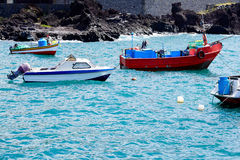 Some old colored fishing boats. In front of Madeira royalty free stock photo