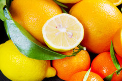 Some orange fruit , fresh tangerines oranges. Orange fruit , fresh tangerines oranges Royalty Free Stock Photo
