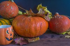 Halloween holiday concept. Some orange pumpkins, halloween mug and dry maple leaves on dark background Royalty Free Stock Photo