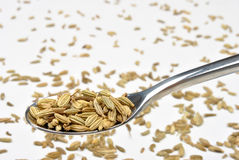 Some organic caraway seed Royalty Free Stock Photography