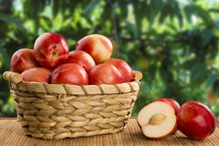 Some peaches in a basket over a wooden surface. Some peaches in a basket over a wooden surface on a green and natural background royalty free stock photography
