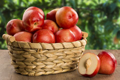 Some peaches in a basket over a wooden surface. Some peaches in a basket over a wooden surface on a green and natural background royalty free stock photo