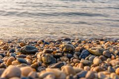 Some pebble stones on the beach. With sunset royalty free stock photography