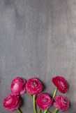 Some peonies on dark wooden background. Some red peonies on dark wooden background. Top view Stock Photography