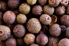 Some peppercorns. Some pepper corns close up stock photography
