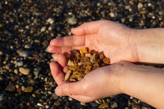 Some pieces of amber found on the Baltic seashore Royalty Free Stock Photo