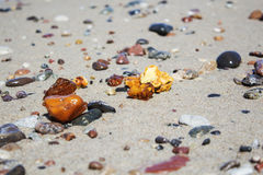 Some pieces of amber found on the Baltic seashore Stock Photos