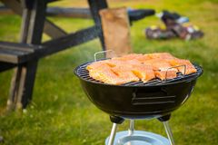 Some pieces of hot roasted salmon steak cooked on barbecue in the park. Some pieces of hot roasted salmon barbecue steak cooked on barbecue in the park Royalty Free Stock Images