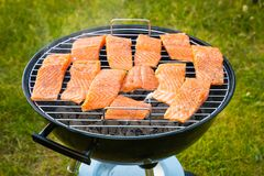 Some pieces of hot roasted salmon steak cooked on barbecue in the park. Some pieces of hot roasted salmon barbecue steak cooked on barbecue in the park Royalty Free Stock Photo