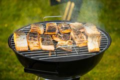 Some pieces of hot roasted salmon steak cooked on barbecue in the park. Some pieces of hot roasted salmon barbecue steak cooked on barbecue in the park Stock Photos