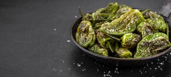 Some Pimientos de Padron on a dark slate slab. Some Pimientos de Padron on a slate slab as detailed close-up shot; selective focus Stock Images