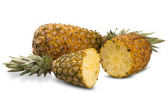 Some pineapples over a white background. Stock Photography