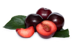 Some plums. With two slices of plum over white background Stock Image