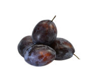 Some plums. On a white background a horizontal format Stock Photography