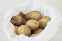 Some potatoes Royalty Free Stock Photography